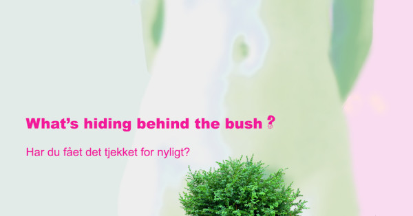 Behind the bush
